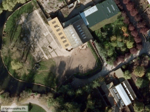Aerial imagery: giraffes at Chester Zoo